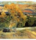 ls Sorolla 1906 El arbol amarillo La Granja