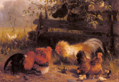 Jutz Carl Chickens