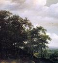 Lagoor de Jan Wooded landscape Sun