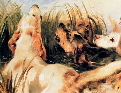 Landseer Edwin Otter dogs Sun