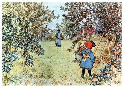 ls Larsson 1903 Apple Harvest watercolor