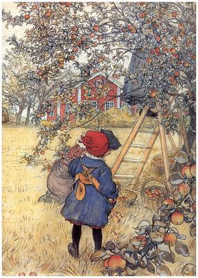 ls larsson2 46 la recogida de las manzanas detalle 1904