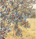 ls larsson2 45 la recogida de las manzanas detalle 1904
