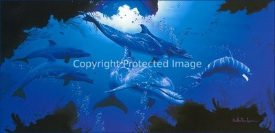 am Christian Riese Lassen Five Dolphins