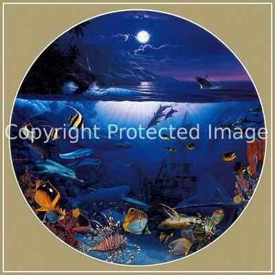 p Christian Lassen Maui Whale SongXL
