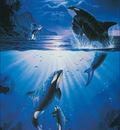 am Christian Riese Lassen Mystic Orcas