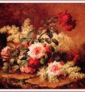 bs flo Paul De Longpre Roses