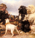 Ansdell Richard The Lucky Dogs