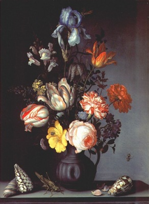 ast flowers in vase with shells and insect c1628