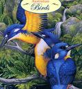 Shirley Barber Australian Birds 2003 Calendar p Australian Birds Cal2003 Cover