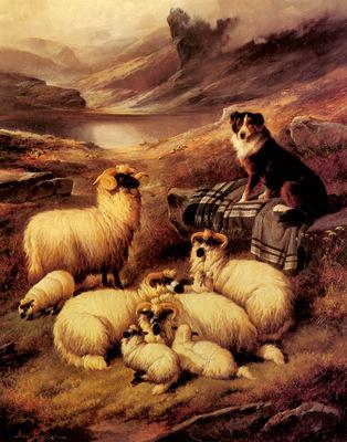 Barker John Guarding His Flock