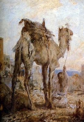 Bauer Marius The camel Sun