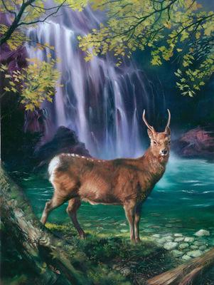JB 1998 deer