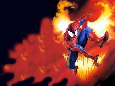 JLM Julie Bell Spiderman vs Carnage