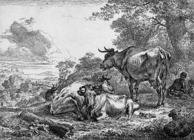 Berchem Nicolaes Three resting cows Sun
