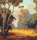 bischoff summer, a california woodland