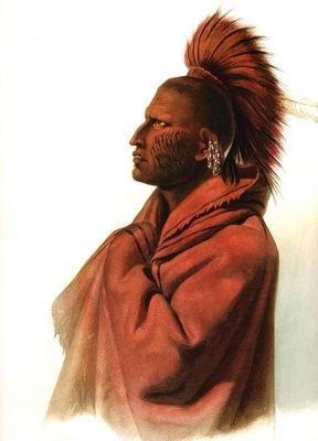 Kb 0014 Massika Saki Indian KarlBodmer, 1833 sqs