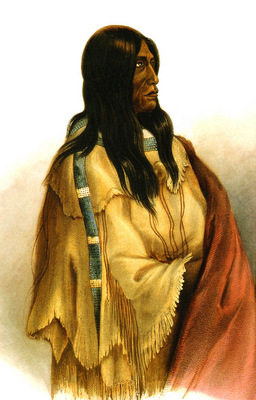Kb 0025 Woman of The Snake Tribe KarlBodmer, 1832 33 sqs