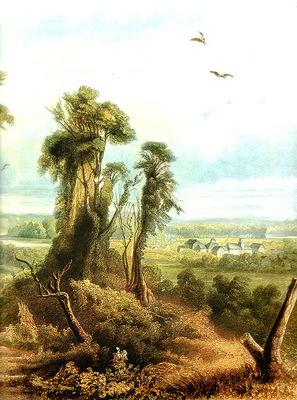 Tna 0010 Along the Wabash [ Right ] KarlBodmer, 1832 34 sqs