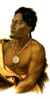 Tna 0039 Chief of the Puncas Karl Bodmer, 1833 sqs