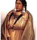 sharper native americans swd