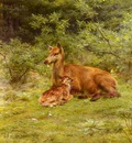 Bonheur Rosa Doe And Fawn In A Thicket