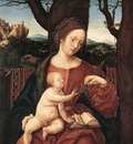 BURGKMAIR Hans Madonna With Grape