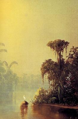 Norton Bush Brume tropicale R , De