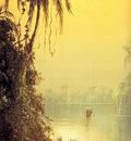 Norton Bush Brume tropicale L , De