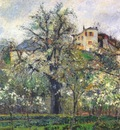pissarro kitchen garden and flowering trees, spring, pontoise