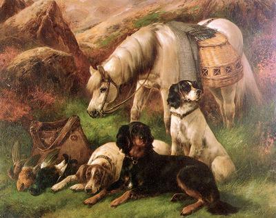 Cheviot Lilian Scottish and Sealyham terrier Sun