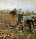 Claus Emile The beet harvest Sun