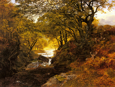 Cole George Vicat Deer In A Woodland Glade