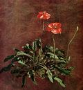 Constable John Study for poppies Sun