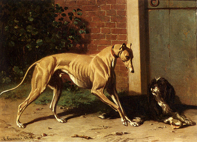 Cunaeus Conradyn A Greyhound And A Shepherd Dog