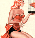 Pin up JM