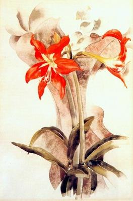 demuth amaryllis c1923