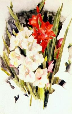 demuth gladiolus c1923