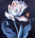 Barbara Dietzsch Parrot Tulip, Butterfly and Scarab, De