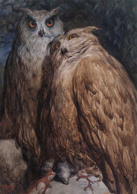 Dore Gustave Two Owls