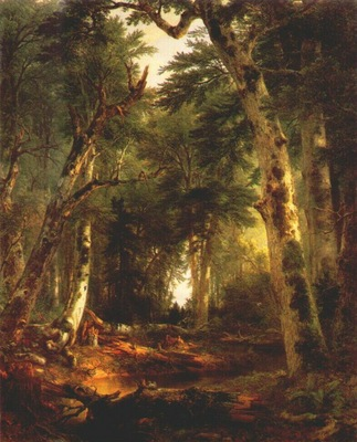 durand in the woods