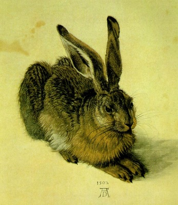 DURER A YOUNG HARE,1502, WATER COLOUR,Graphische Sammlung Al