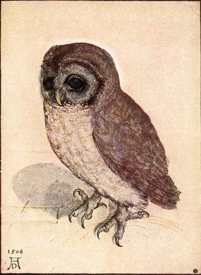 l owl