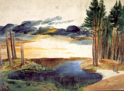 ls Durero 05 Un estanque en el bosque