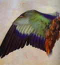 Albrecht Durer Wing of a Roller