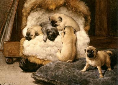 Eerelman Otto Nest Met Jonge Mastiffs