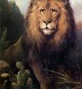 Eerelman Otto Abessynian Lion