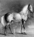 eerelman otto greyhorse