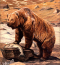 bs na Louis Agassiz Fuertes Alaska Brown Bear