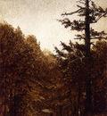 Gifford Sanford Robinson A Forest Road